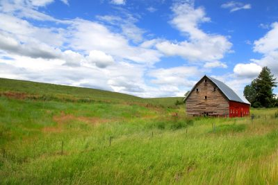 An old barn stands on a grassy field in rural Idaho