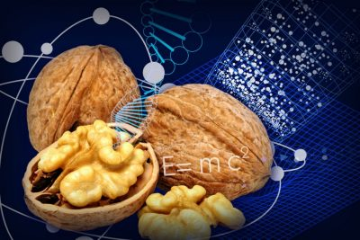 Walnut shell, math equations and DNA double helix spilling out of the nut, and a blue physics grid in the background