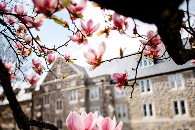 Springtime on the Blacksburg campus