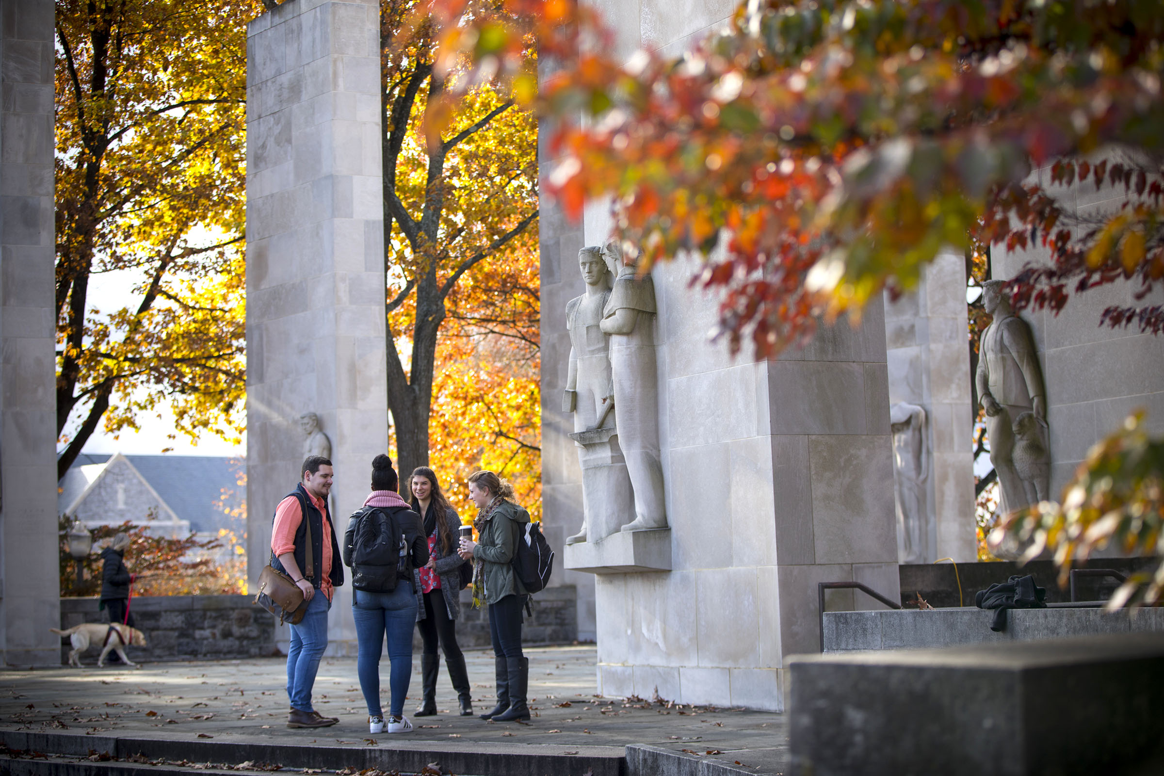 Virginia Tech was ranked in the top ten by PayScale as a Best Value College for Humanities Majors Each year, PayScale releases a College ROI Report that expresses which schools offer the highest return on investment for tuition.