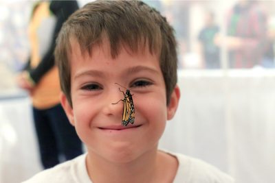 The butterfly tent is a fan favorite at Hokie BugFest. Rasha Aridi for Virginia Tech.