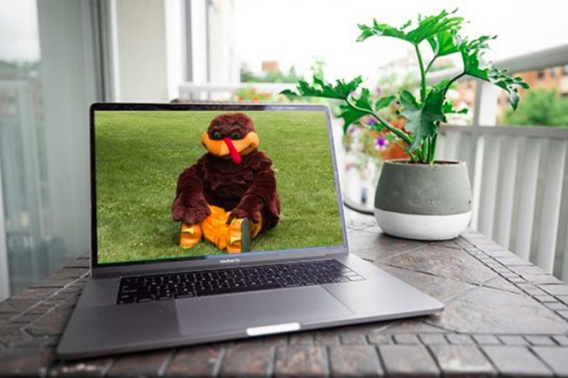 HokieBird on Laptop